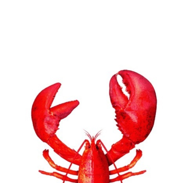 Be a Lobster!
